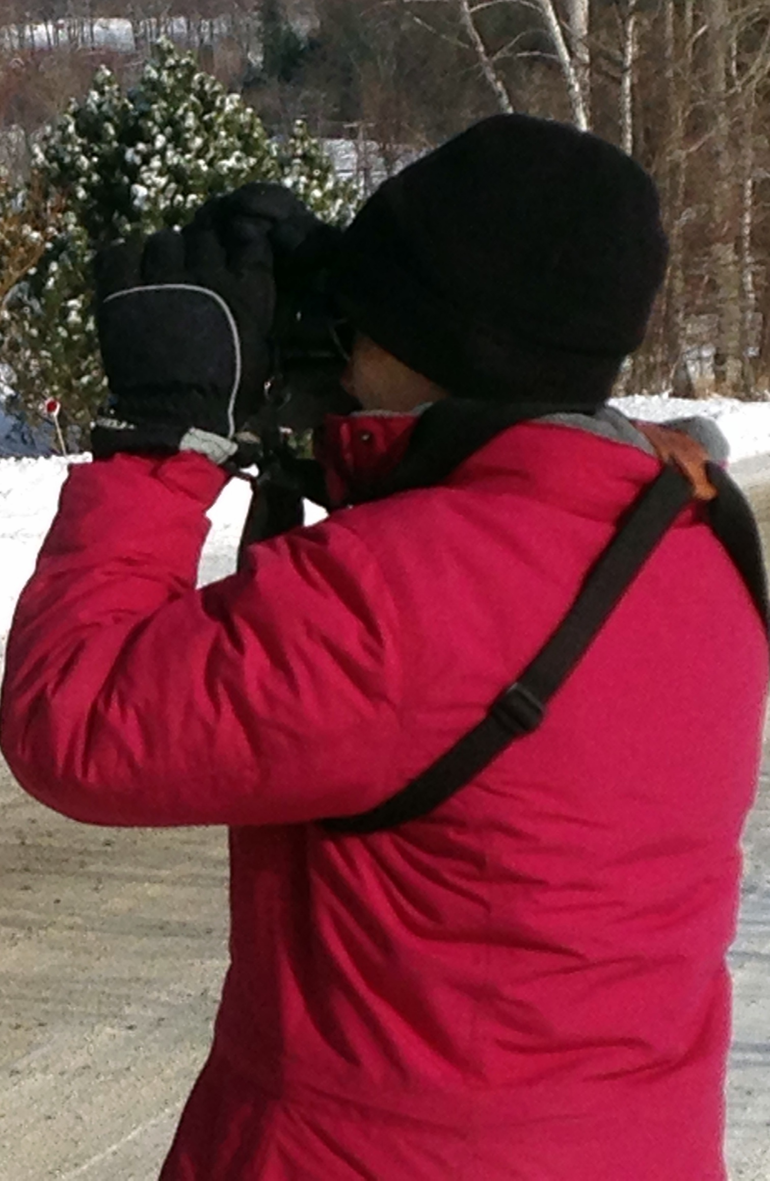 Pat Folsom, of Waitsfield, VT, searches for birds during the Christmas Bird Count